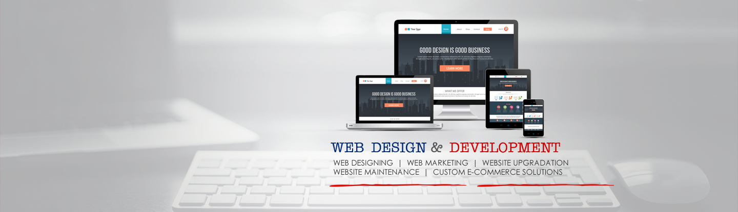 Web Designing and Development India